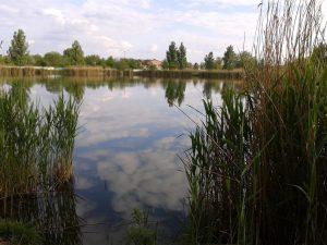 Mezőtúri Ligeti-tó