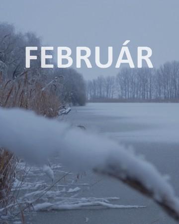 2019. február